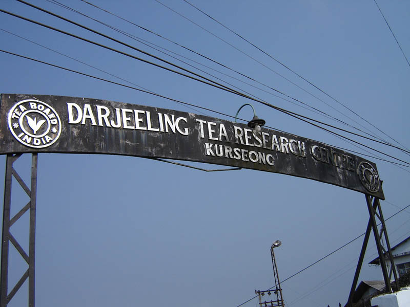 Darjeeling, il Tea Research Center.