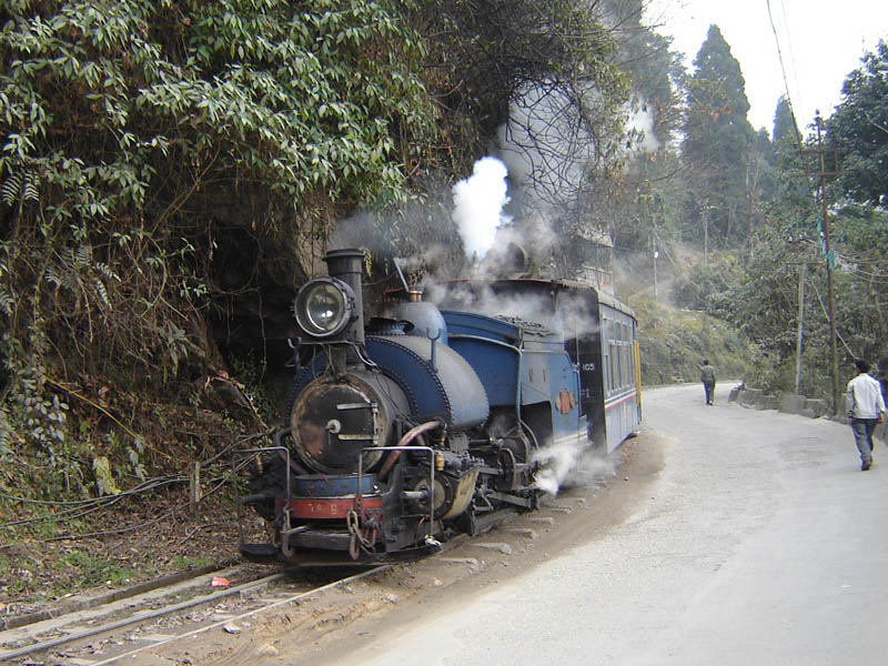 Il trenino per Darjeeling.