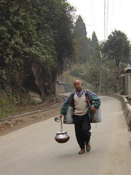 Darjeeling, il Lattaio.