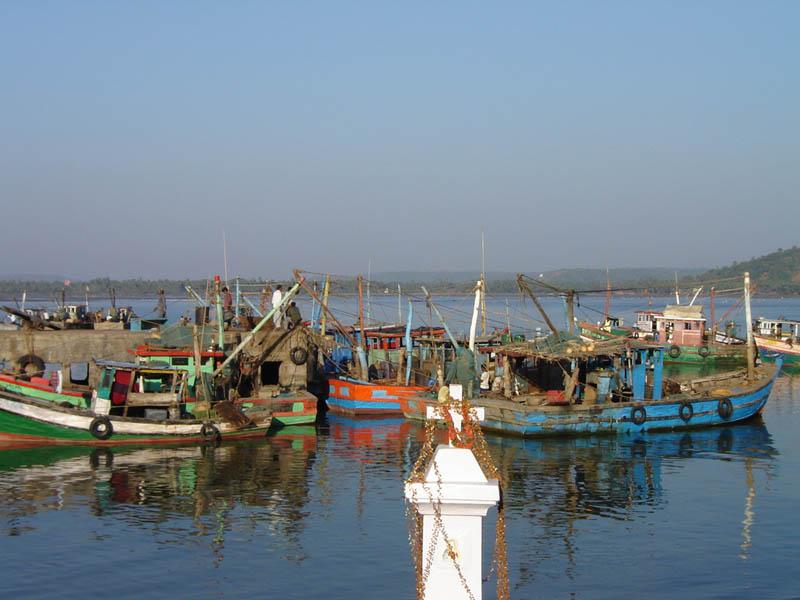 India, barche da pesca.