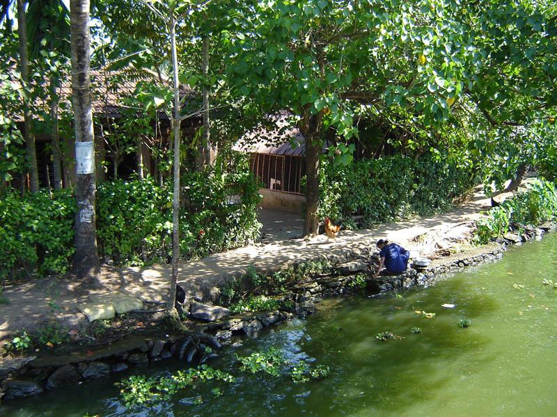 India, Kerala - isole nelle lagune.