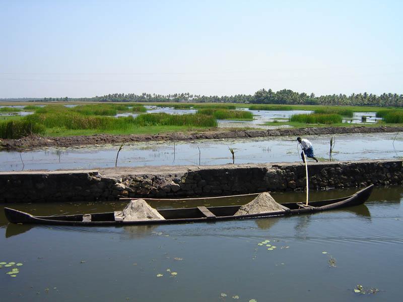 India, Kerala - trasporto sabbia in laguna.