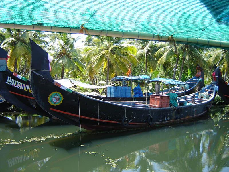 India, Kerala - Le barche della laguna.