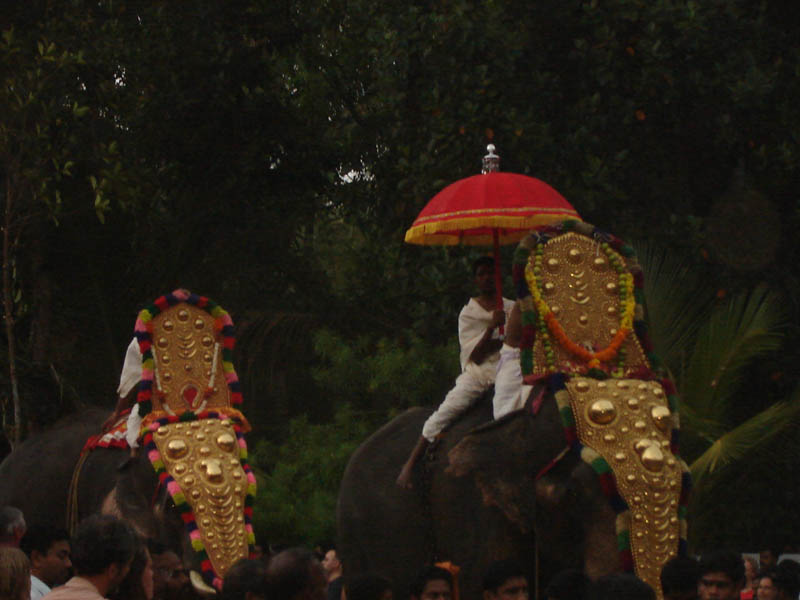 India, Kerala - Sfilata degli elefanti a Varkala.