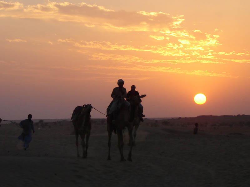 Deserto del Thar, Cammellieri al tramonto.