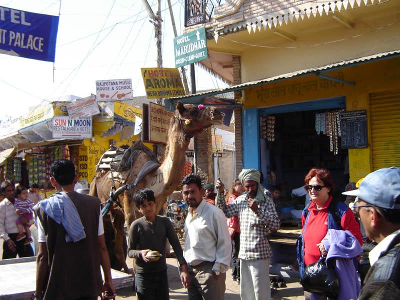 Pushkar, Centro.