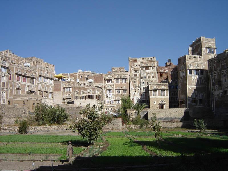 Sanaa, orto in città