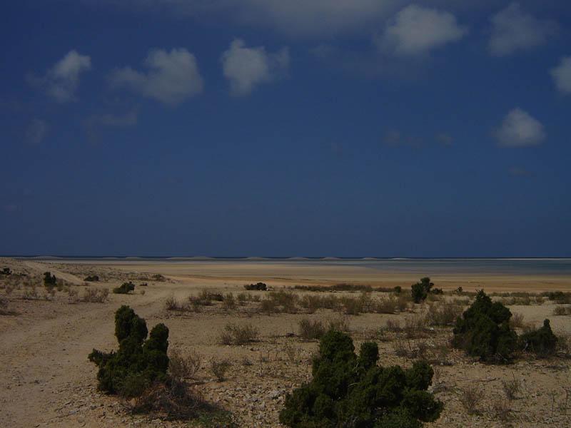 Socotra, Detwah Area Protetta