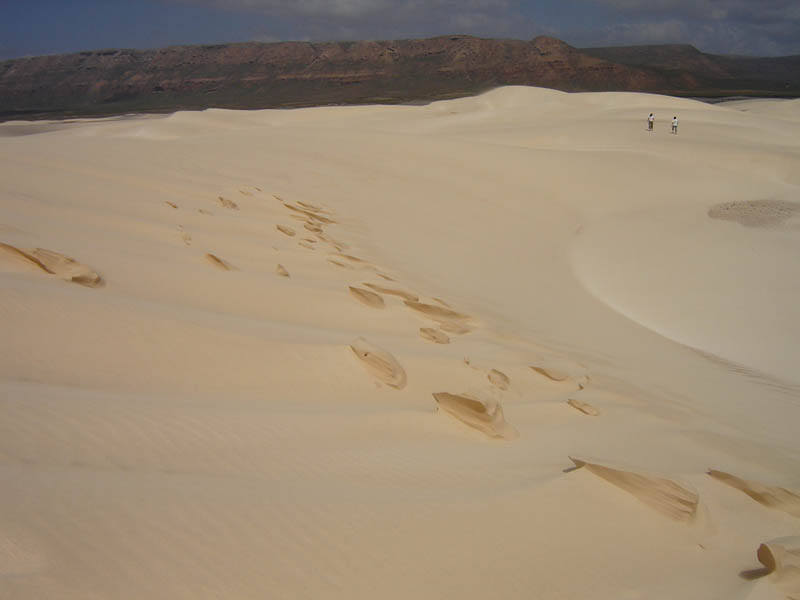 Socotra, orme sulle dune