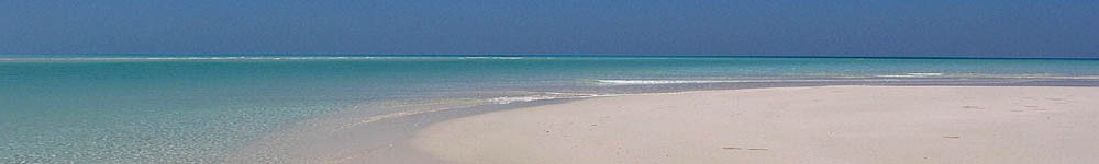Socotra,spiaggia di Detwah