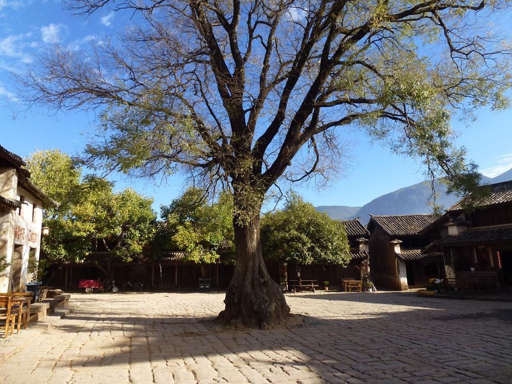 Yunnan, Shaxi