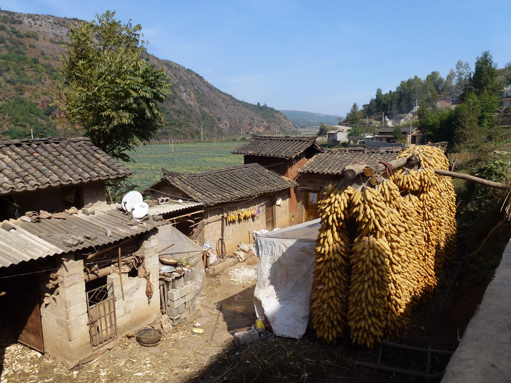 Yunnan, pannocchie di granoturco